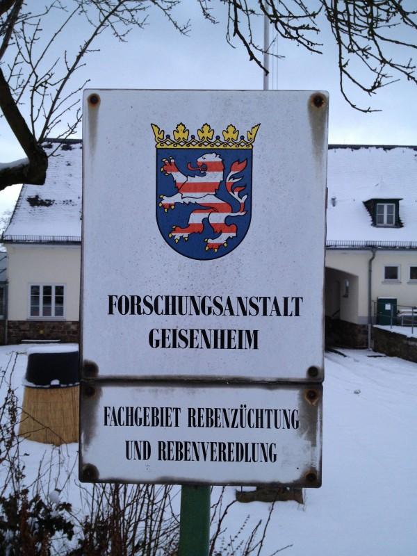 Nachrichten Geisenheim