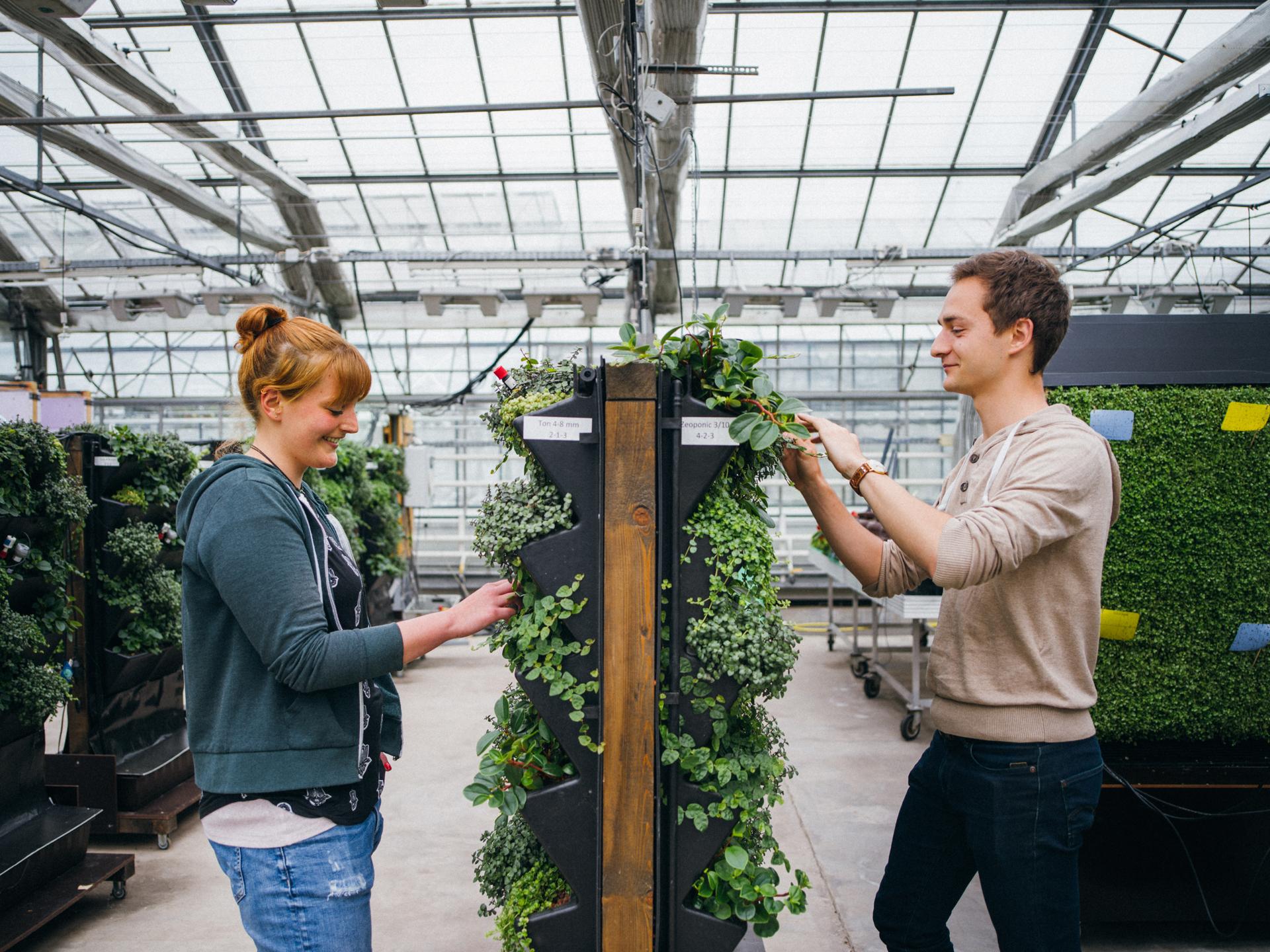 Gartenbauwissenschaften Studium